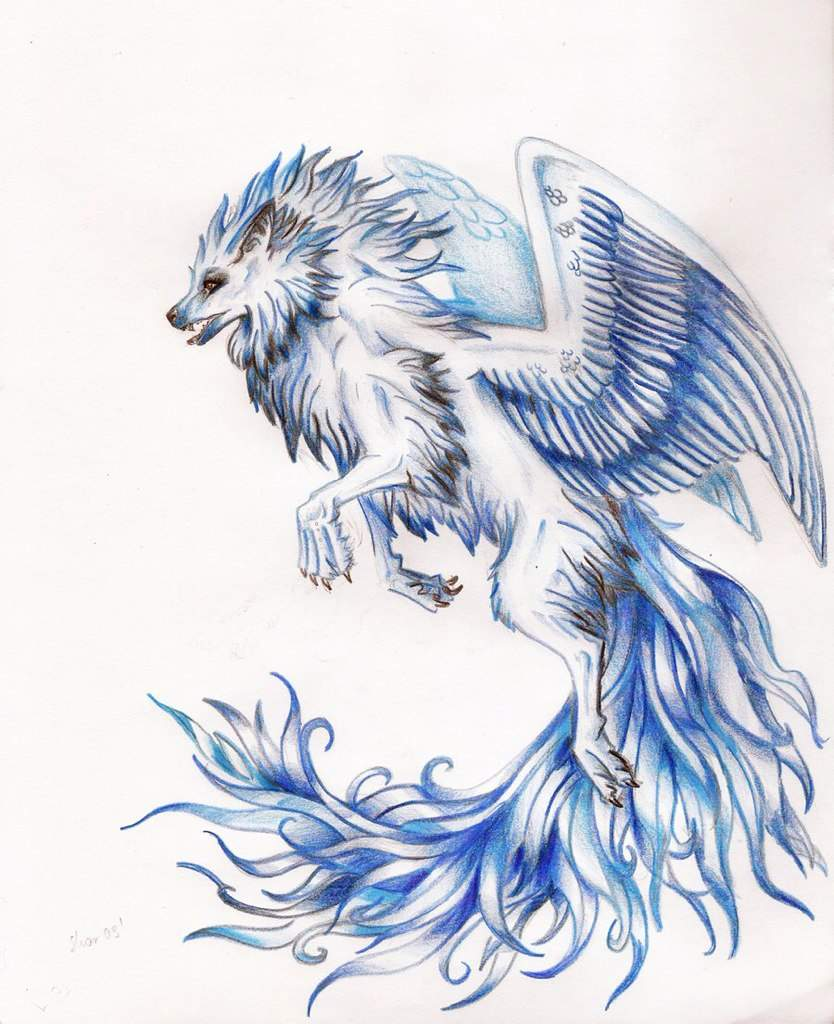All Of My Best Anime Wolf Drawings