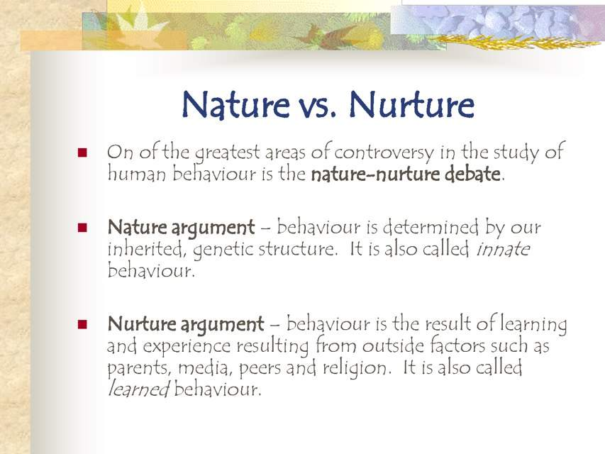 Twins Nature Vs Nurture Anime Amino
