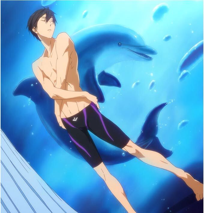 ... The Light Novel High☆Speed!. He Is The Freestyle Swimmer And A  Vice Captain On The Iwatobi High School Swimming Team And A 3rd Year High  School Student ...