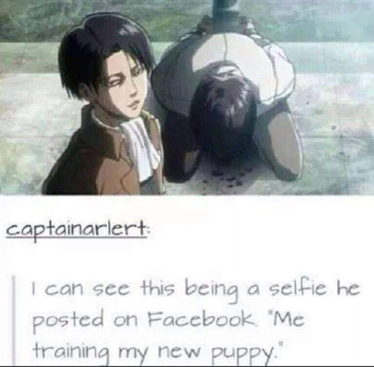 Attack On Titan Selfie